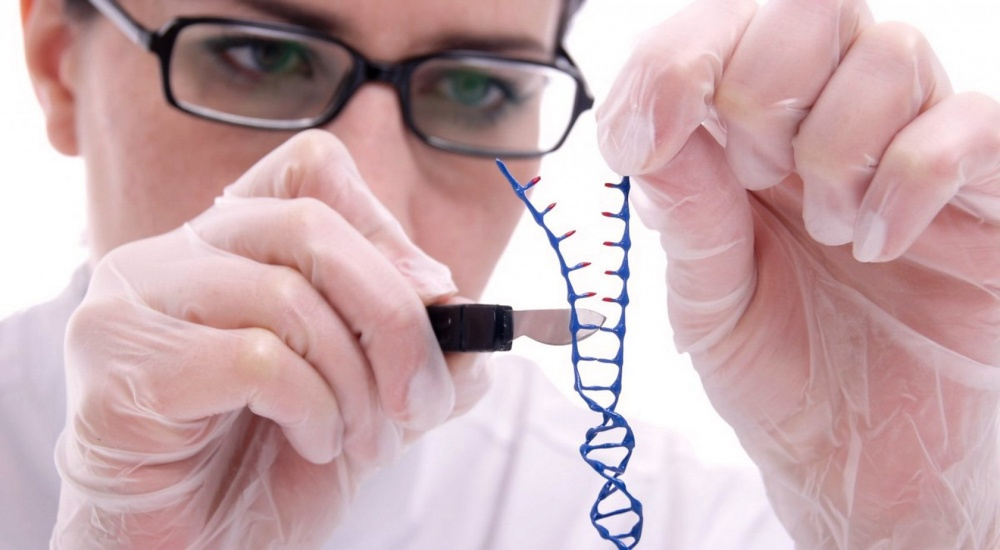 the importance of genetic engineering in todays life Current uses of genetic engineering  genetic engineering has been gaining importance over the last few years  though regretting his public life reporters.